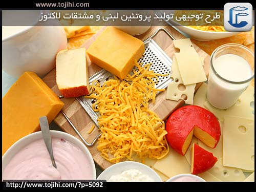 Proteins-dairy